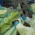 Учёные определили источник китайской вирусной пневмонии