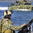 Крым и Украина сделали заявления о «вторжении российских войск»