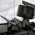 В РФ рассказали о «подмоченной репутации» «Панцирей» и С-300
