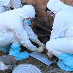В российском регионе 5 человек заразились сибирской язвой