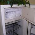 14-летняя школьница родила и спрятала ребенка в морозилке