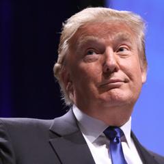 Источником компромата на Трампа назвали россиянку