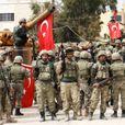 Турция перебрасывает на Украину свои силы для штурма Донбасса