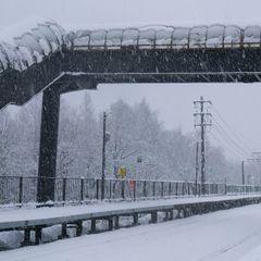 Жуткая трагедия: более 60 человек погибли при уборке снега. Вот что произошло!