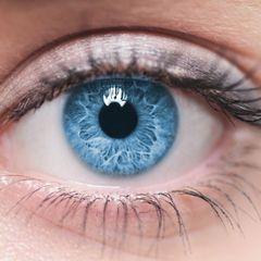 Коронавирус научились определять по глазам заразившегося