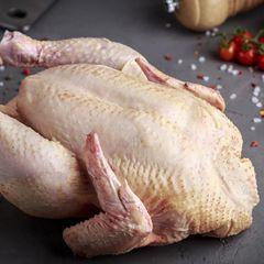 Это самая ядовитая: эту часть курицы есть нельзя ни в коем случае!