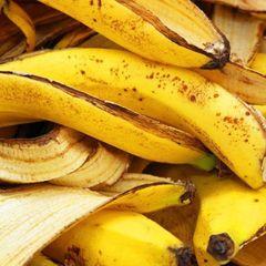 Полезнее нету: почему ни в коем случае нельзя выбрасывать кожуру банана