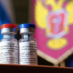 Евросоюз будет умолять Россию предоставить им вакцину «Спутник V»
