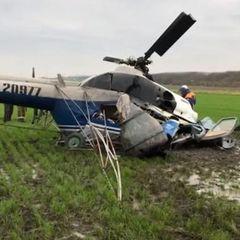 Появилось видео с места крушения вертолета на Кубани