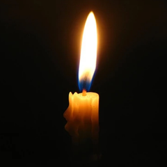 Стало известно о смерти Моисеевой - СМИ