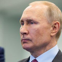 Мировые знаменитости обратились к Путину с очень странной просьбой