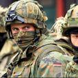 «Маленькая и незначительная страна»: Немцы о «силовом ответе» РФ