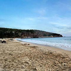 Люди увидели на пляже необычное, а когда поняли что это, были в ужасе!