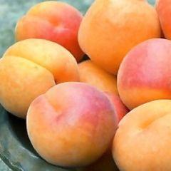 Медики назвали фрукт смертельно опасный для детей