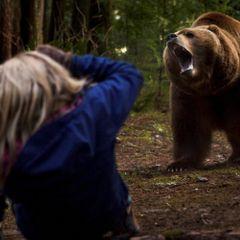 Неделю он пытался спастись от медведя, а потом случилось это