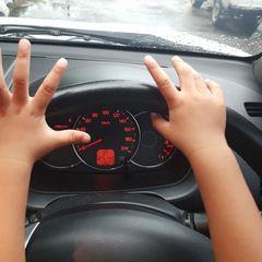 Популярный блогер посадил за руль ребенка: вот что произошло потом
