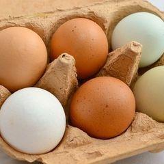 Вредят больше, чем яд: названы смертельно опасные виды яиц