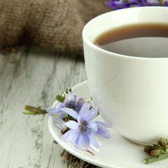Цикорий: что будет, если выпивать по одной чашке каждый день