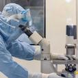 Биологи обнаружили новое средство для борьбы с коронавирусом