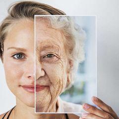 Сногсшибательное открытие: как сильно замедлить старение