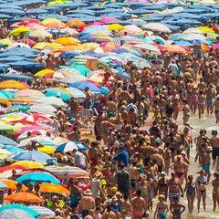 Все в ужасе от увиденного на крымском пляже. Это уму непостижимо...