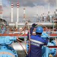 США пообещали привлечь «Газпром» за нарушение санкций